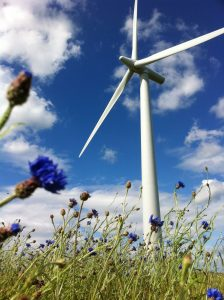 Looking up at a turbine on a sunny day with fluffy white clouds in the background and wild flowers in the foreground.